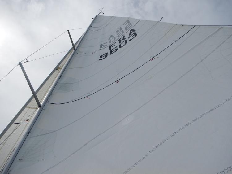 DSCN0305